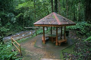 Rainforest Paradise, lodge, Mahua waterfall, adventure, outdoor, jungle trekking. Taman Banjaran Crocker, backpackers, destination, Borneo, Interior Division, Malaysia, tourist attraction, travel guide, crossborder, 坦布南沙巴