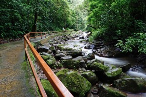 Rainforest Paradise, air terjun, adventure, nature, outdoor, jungle trekking. Crocker Range Park, destination, Borneo, Interior Division, Malaysia, Tourism, tourist attraction, crossborder, 坦布南沙巴, 婆罗洲瀑布