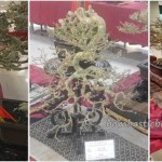 古晋砂拉越, 马来西亚, 盆栽, 木化石, Persatuan, Malaysia, Borneo, Tourism, tray planting, event, Japanese art, penjing, penzai, exhibition, petrified wood,