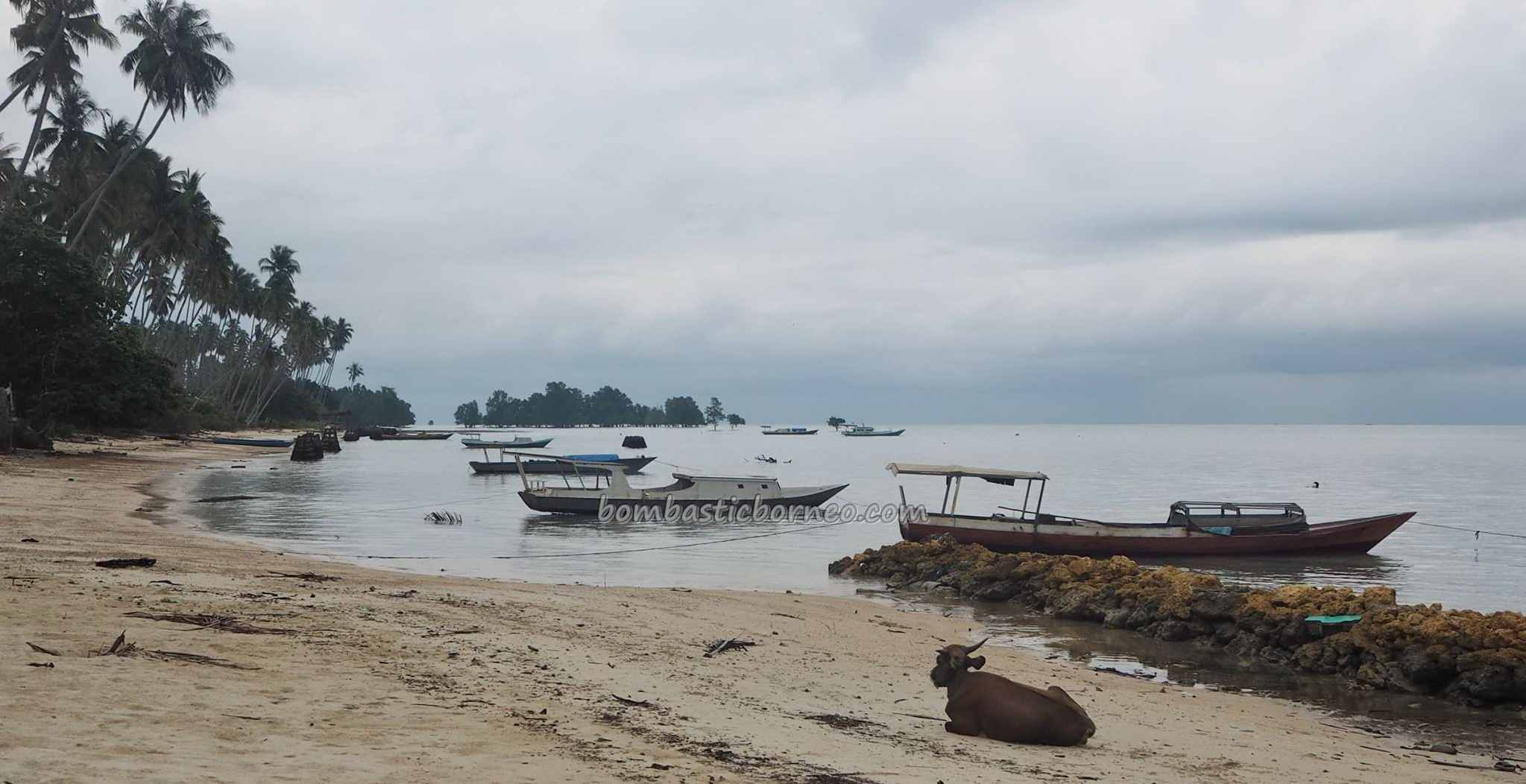 white sandy beach, fishing village, Kampung, outdoor, authentic, Berau, Indonesia, holiday, obyek wisata, Tourism, tourist attraction, travel guide, transborder, 婆罗洲, 旅游景点