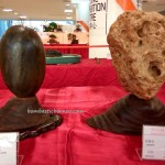 古晋砂拉越, 马来西亚, 盆栽, 木化石, persatuan, Borneo, Tourism, nature, hobby, Japanese art, penjing, exhibition, show, bonsai, stone