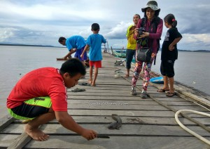 fishing, adventure, nature, outdoor, destination, Borneo, Pulau, Kota, Obyek wisata, Tourism, travel guide, transborder, 婆罗洲, 旅游景点