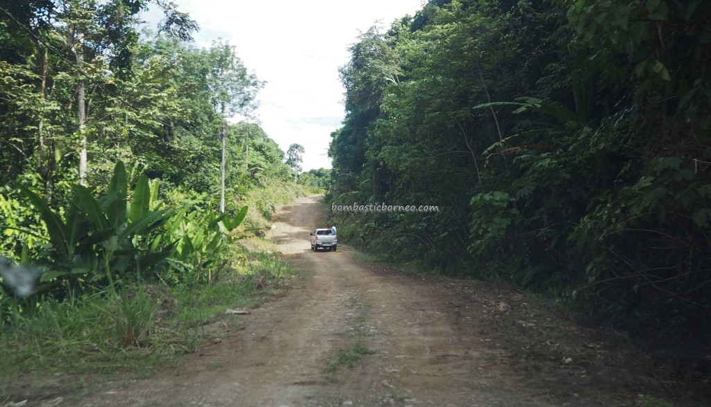 Air Terjun Penawan, Ecotourism Park, resort, chalets, hidden paradise, backpackers, destination, Borneo, Limbang, Malaysia, Tourist attraction, travel guide, Kampung Pengalih, transborder, 老越砂拉越,