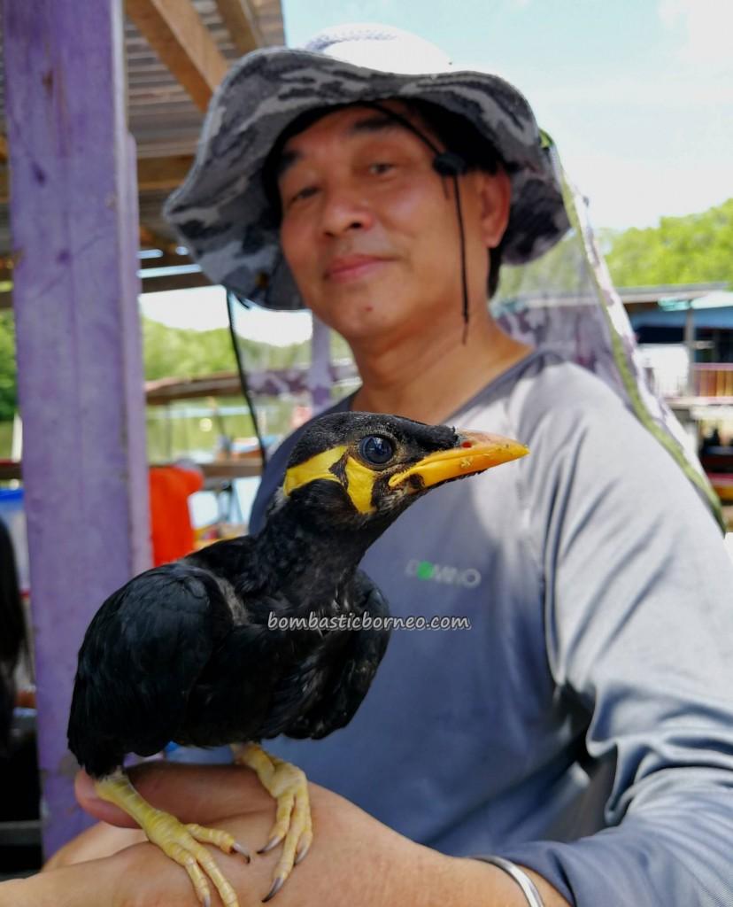 Kampung Melayu, water village, floating house, authentic, traditional, backpackers, Malaysia, Sarawak, Tourism, tourist attraction, crossborder, Ikan Tahai, Udang Kering, destination,
