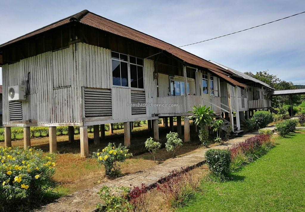 Ethnic, dayak village, native, authentic, traditional, backpackers, destination, Borneo, Sarawak, Malaysia, Tourism, tourist attraction, 老越砂拉越, 婆罗洲