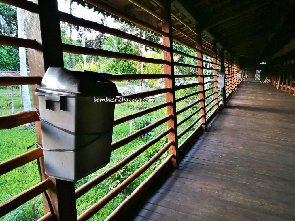 Rumah Betang Soo Limung, longhouse, Suku Dayak Taman, authentic, destination, Putussibau Selatan, Indonesia, West Kalimantan, Kapuas Hulu, Desa Melapi, native, Tourism, tourist attraction, travel guide, Transborneo,