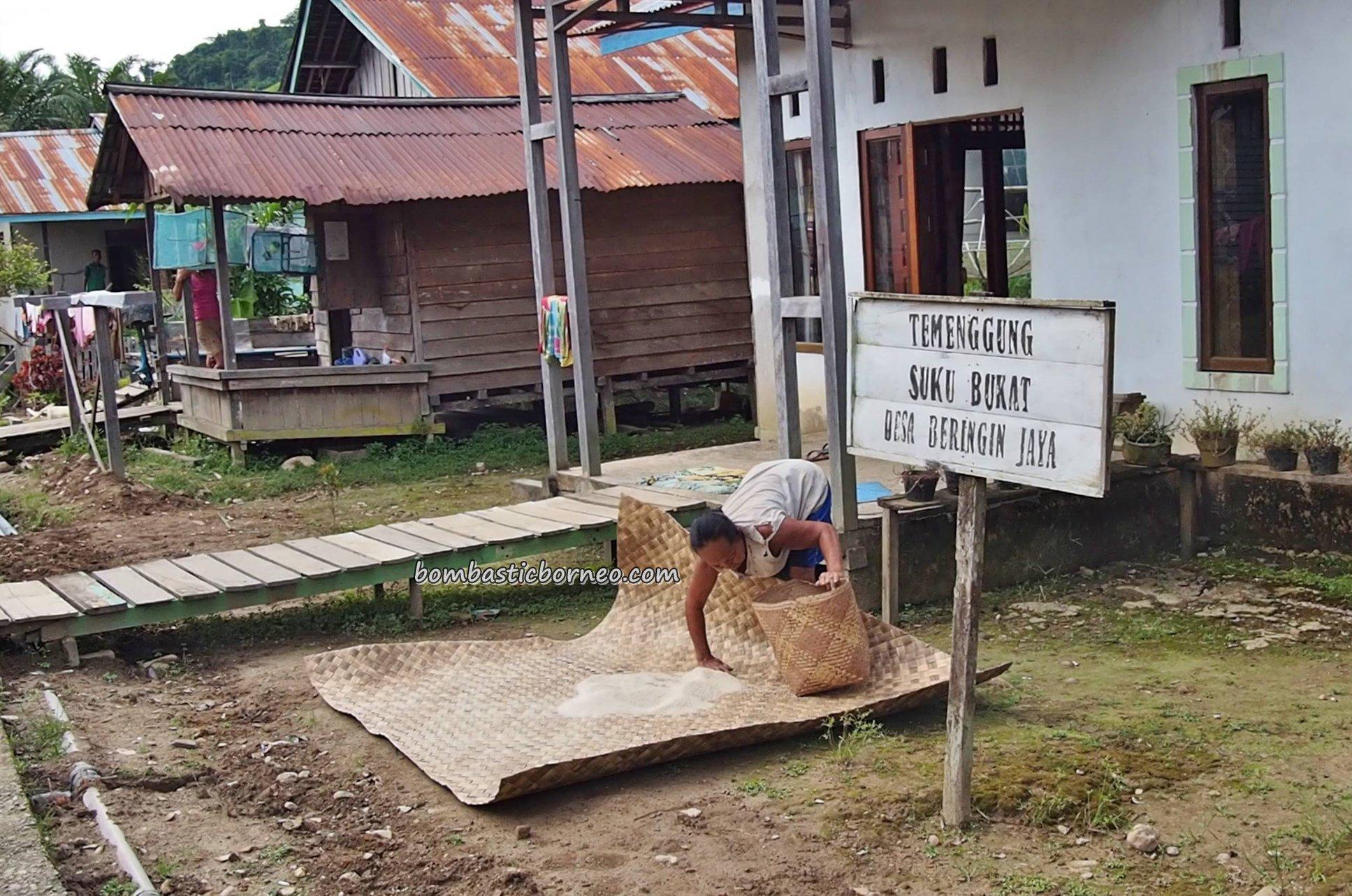 antique, Situs Neolitikum, Neolithic Site, authentic, Desa Beringin Jaya, Dusun Nanga Balang, Putussibau Selatan, Indonesia, Kapuas Hulu, Suku Dayak Bukat, Pariwisata, Tourism, village, transborder, 婆罗洲西加里曼丹, 旅游景点