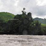 speedboat, Sungai, adventure, nature, destination, Desa Beringin Jaya, Indonesia, West Kalimantan, Kapuas Hulu, Putussibau Selatan, Tourism, travel guide, transborder, 婆罗洲