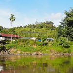 destination, Borneo, Desa Beringin Jaya, Indonesia, Kalimantan Barat, Kapuas Hulu, native, Suku Dayak Bukat, Tourism, tourist attraction, travel guide, traditional, crossborder, 婆罗洲, 印尼西加里曼丹