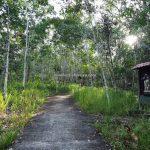 Mother Mary Cave, adventure, nature, waterfall, backpackers, destination, Kalimantan Barat, Kapuas Hulu, Desa Sayut, Obyek wisata, Tourism, Transborneo, 婆罗洲西加里曼丹, 旅游景点