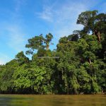speedboat ride, Sungai, adventure, nature, outdoor, destination, Indonesia, Putussibau Selatan, village, Obyek wisata, travel guide, crossborder, 婆罗洲西加里曼丹