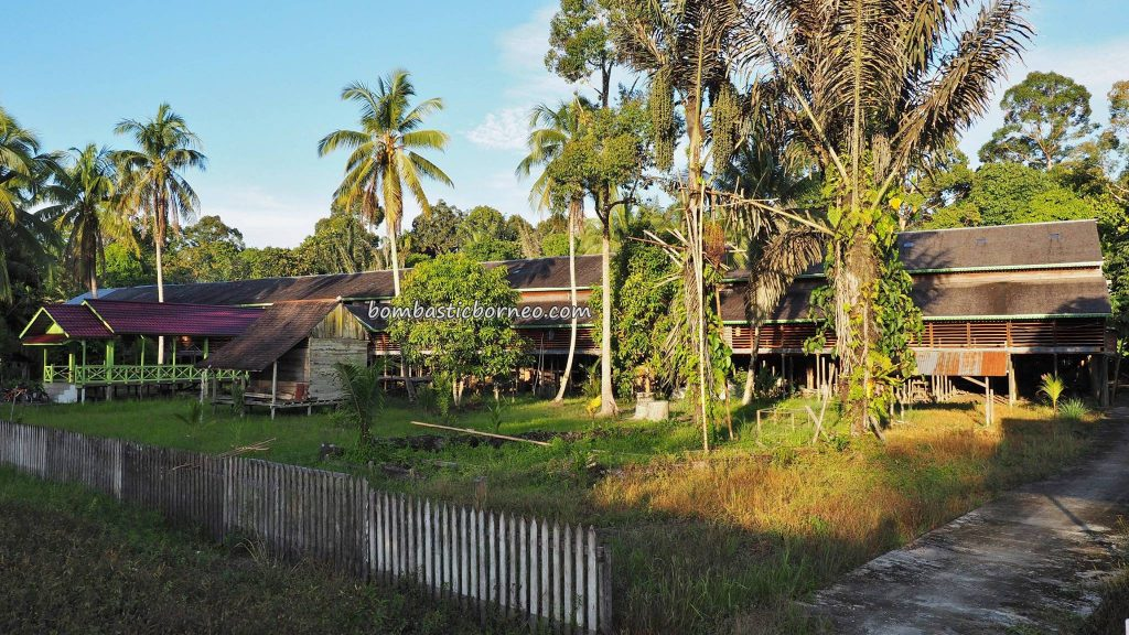 longhouse, Suku Dayak Taman Kapuas, authentic, traditional, village, backpackers, destination, Borneo, Indonesia, West Kalimantan, native, Tourism, tourist attraction, transborder, 西加里曼丹, 长屋旅游景点