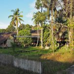 longhouse, Suku Dayak Taman Kapuas, authentic, traditional, village, backpackers, destination, Borneo, Indonesia, West Kalimantan, native, Tourism, tourist attraction, transborder, 西加里曼丹, 长屋旅游景点
