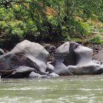 Speedboat ride, Sungai Hovongan, backpackers, destination, West Kalimantan, Kapuas Hulu, Putussibau Selatan, Tourism, tourist attraction, travel guide, crossborder, 婆罗洲卡江, 印尼西加里曼丹