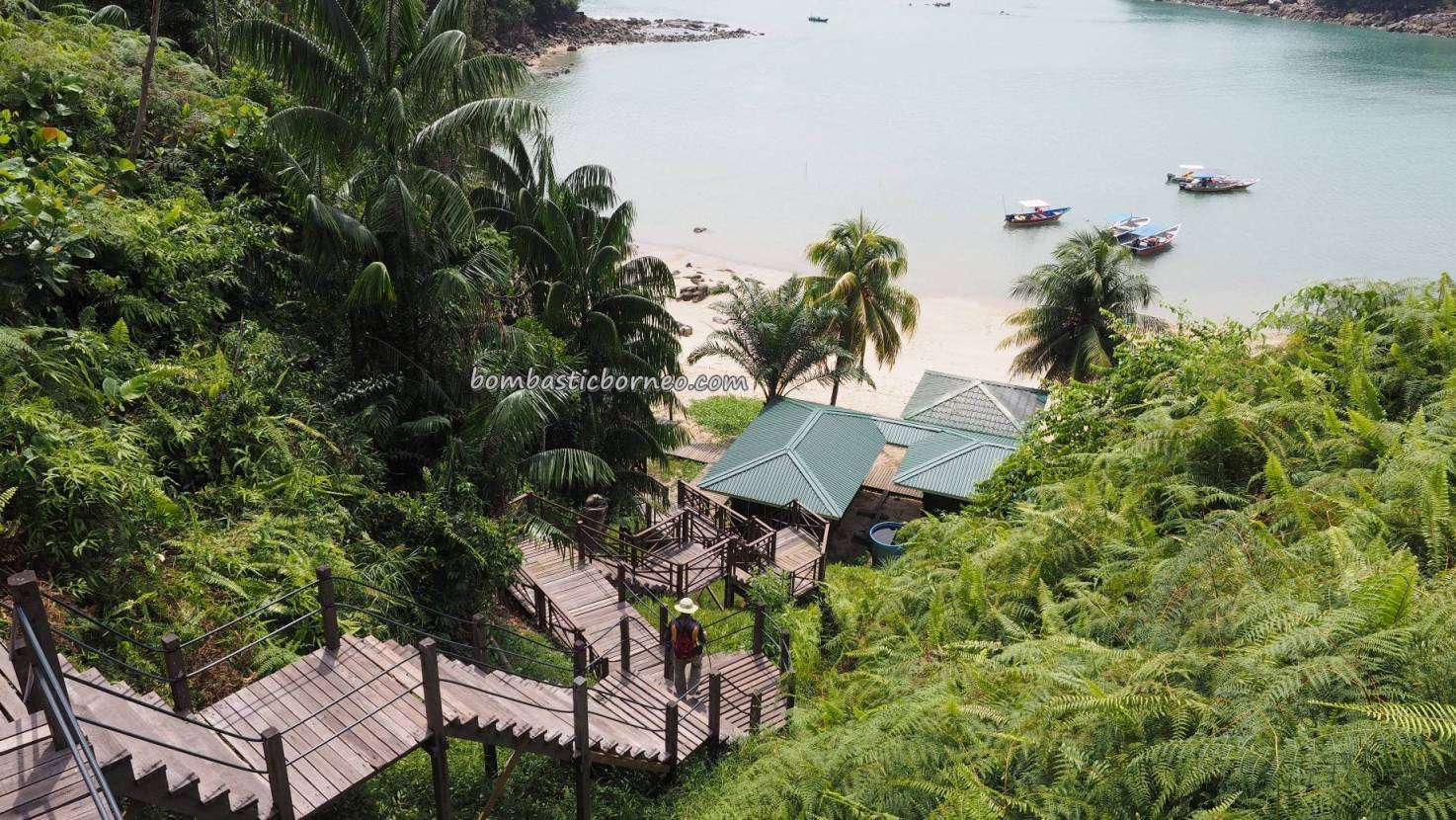 beach, Taman Negara, adventure, nature, jungle hiking, backpackers, hidden paradise, Kuching, Malaysia, Tourist attraction, travel guide, view point, Pulau Tok Nan, Transborneo, 砂拉越峇哥国家公园, 婆罗洲旅游景点