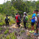 Taman Negara Bako, adventure, nature, outdoor, rainforest, backpackers, Sarawak, Malaysia, Tourism, tourist attraction, travel guide, Pulau Tok Nan, Transborneo, 砂拉越马来西亚, 古晋巴哥国家公园