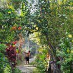 adventure, authentic, village, Indonesia, West Kalimantan, Kapuas Hulu, Indigenous, Suku Dayak Bukat, native, tribal, Obyek wisata, Tourism, crossborder, 西加里曼丹, 原住民部落