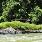 Speedboat ride, Hovongan River, adventure, nature, outdoor, backpackers, destination, Indonesia, wisata alam, Tourism, tourist attraction, travel guide, transborder, 婆罗洲卡普阿斯河, 印尼西加里曼丹