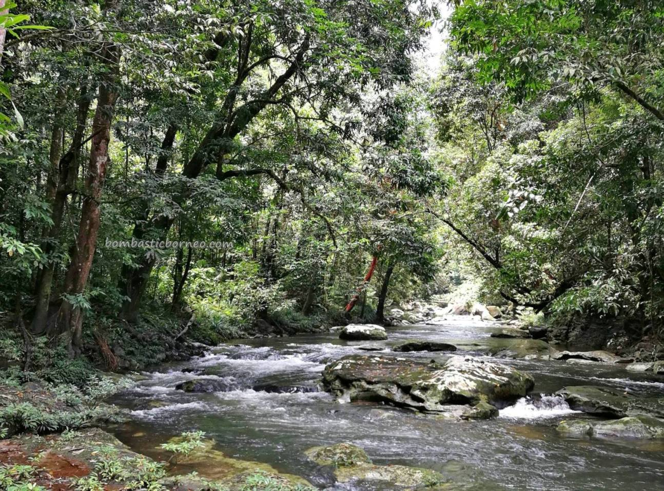 Riam Menajur, Waterfall, adventure, nature, jungle trekking, destination, Bengkayang, Borneo, Indonesia, West Kalimantan, Dusun Laek, Sanggau Ledo, Tourism, tourist attraction, travel guide, transborder,