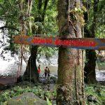 Menajur Waterfall, air terjun, nature, jungle trekking, exploration, Bengkayang, Borneo, Desa Bengkilu, Dusun Laek, Tujuh Belas, Tourism, travel guide, authentic village, transborder, 印尼西加里曼丹, 婆罗洲瀑布旅游