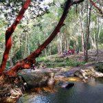 Kumpang Langgir, waterfall, adventure, nature, alam, expedition, jungle trekking, destination, Borneo, Engkilili, Lubok Antu, Tourist attraction, travel guide, crossborder, 砂拉越马来西亚, 瀑布旅游景点,