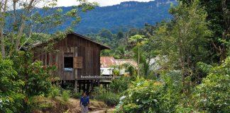 Suku Dayak Uheng Kereho, adventure, authentic, traditional, village, destination, Borneo, Indonesia, Putussibau Selatan, native, tribe, Tourism, tourist attraction, crossborder, 印尼西加里曼丹, 普南族部落