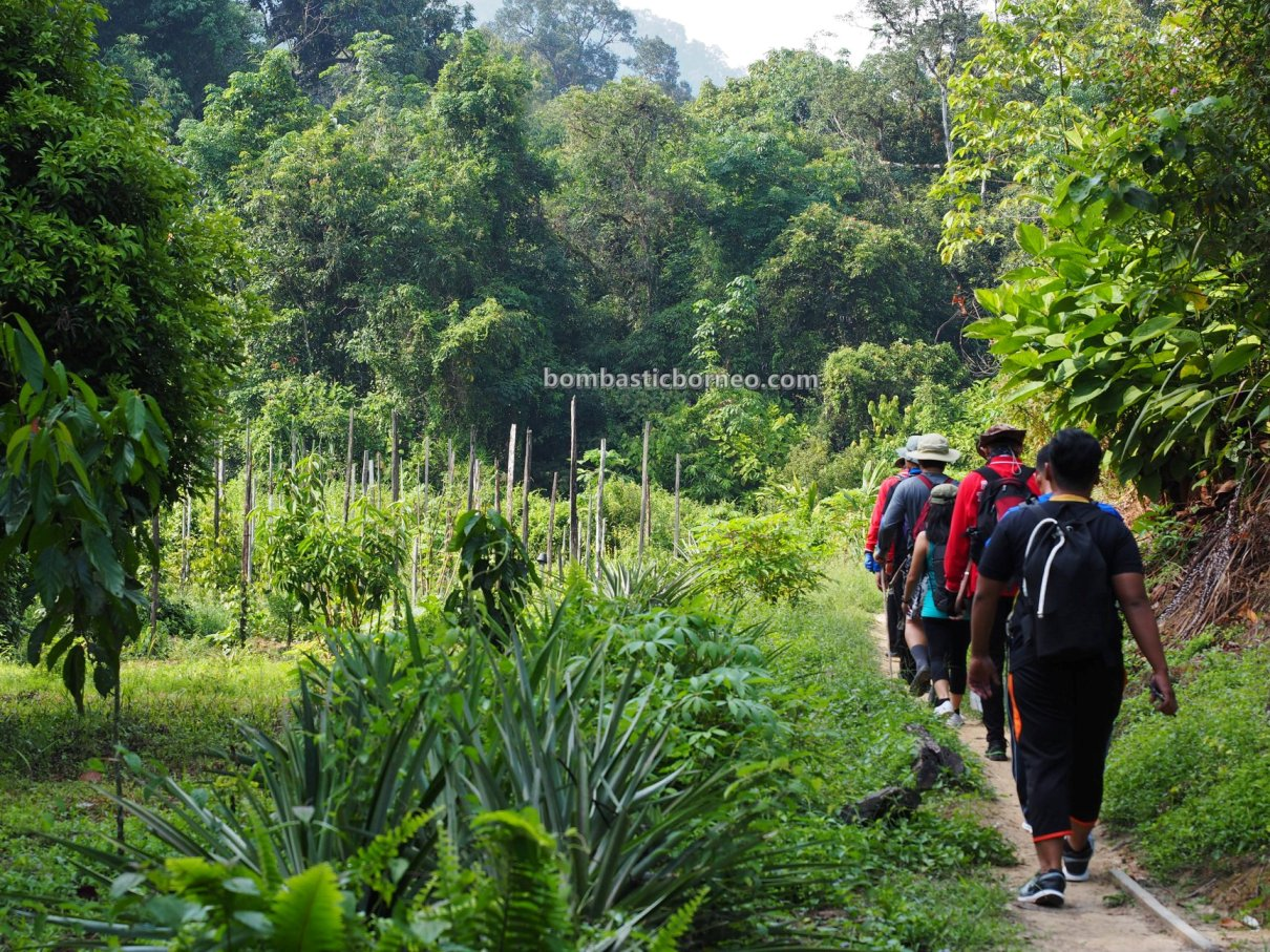 Kemantan Lidi, Kumpang Langgir, air terjun, waterfall, nature, outdoor, expedition, hiking, backpackers, Engkilili, Tourism, travel guide, Transborneo, 英吉利里砂拉越, 婆罗洲瀑布