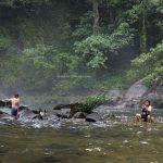 Riam, adventure, nature, outdoor, hiking, exploration, Bengkayang, Indonesia, Dusun Laek, Tujuh Belas, Tourism, tourist attraction, Transborneo, 印尼西加里曼丹, 婆羅洲部落,