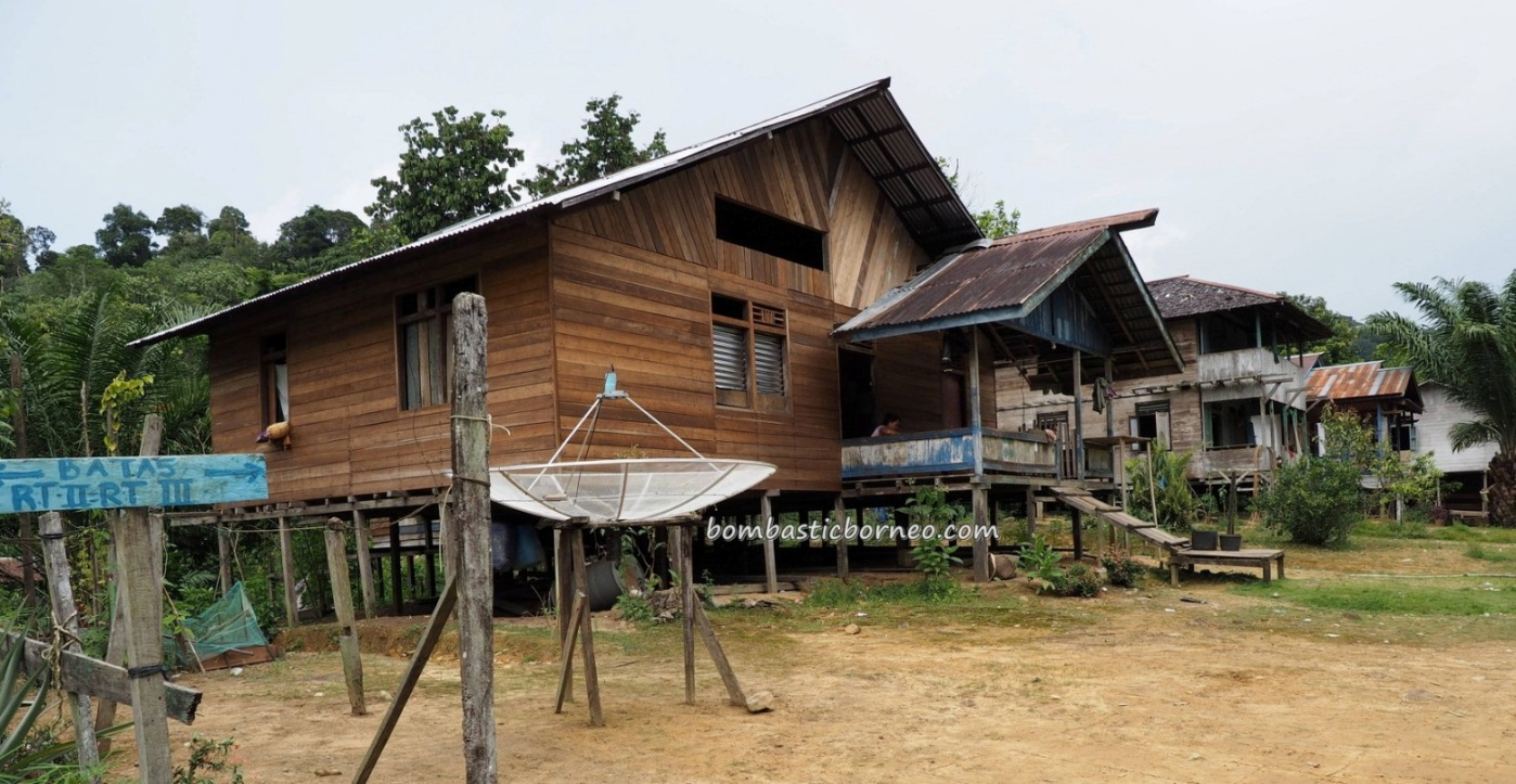 authentic, traditional, village, backpackers, Borneo, Desa Bungan Jaya, Putussibau Selatan, native, Suku Dayak Punan Hovongan, tribe, Tourism, travel guide. crossborder, 婆罗洲西加里曼丹, 普南族原住民