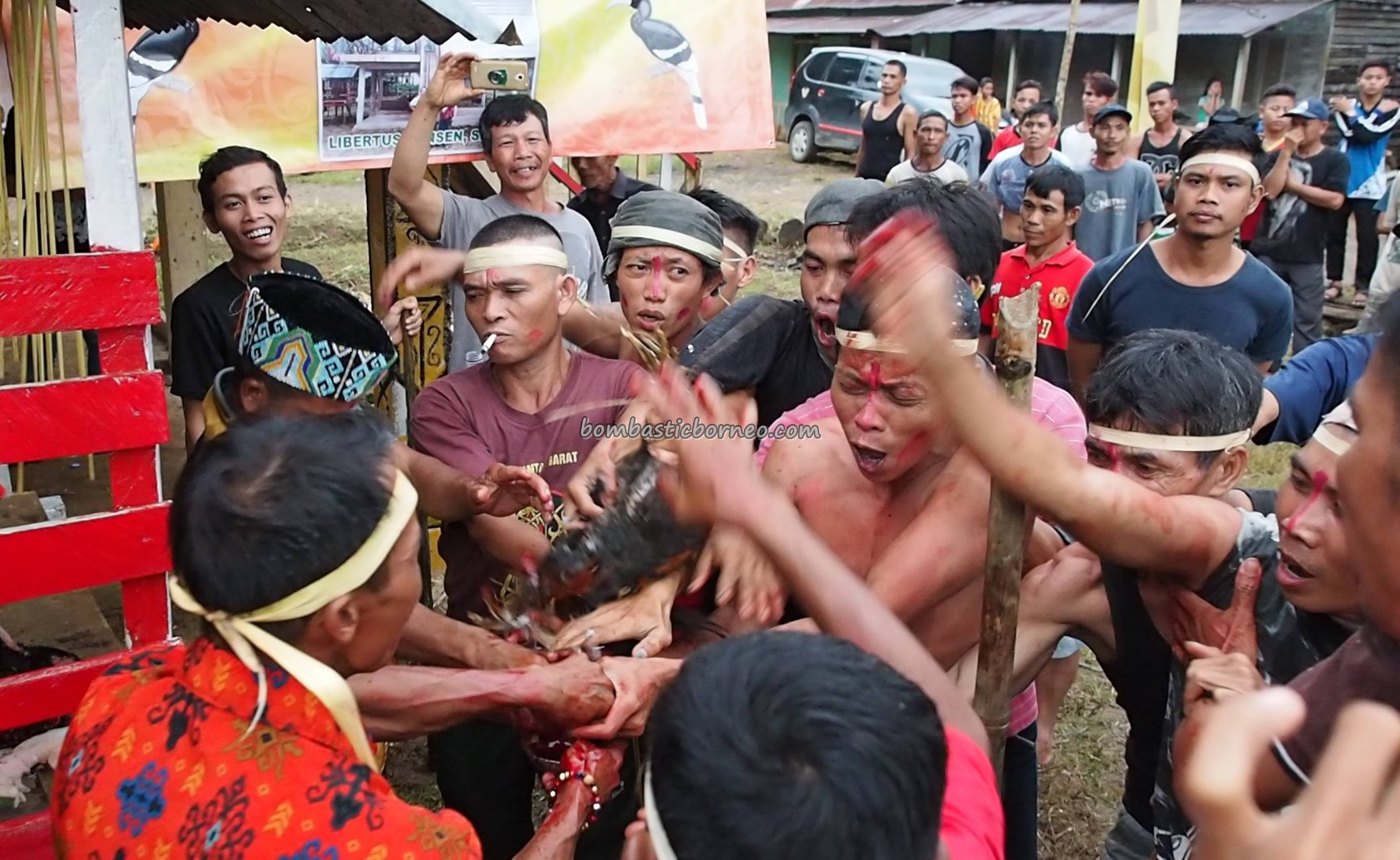 Gawai Dayak, Nyabakng, paddy harvest festival, indigenous, traditional, culture, ritual, skull feeding, Borneo, Indonesia, Bengkayang, Dusun Laek, tribal, Tourist attraction, travel guide, transborder