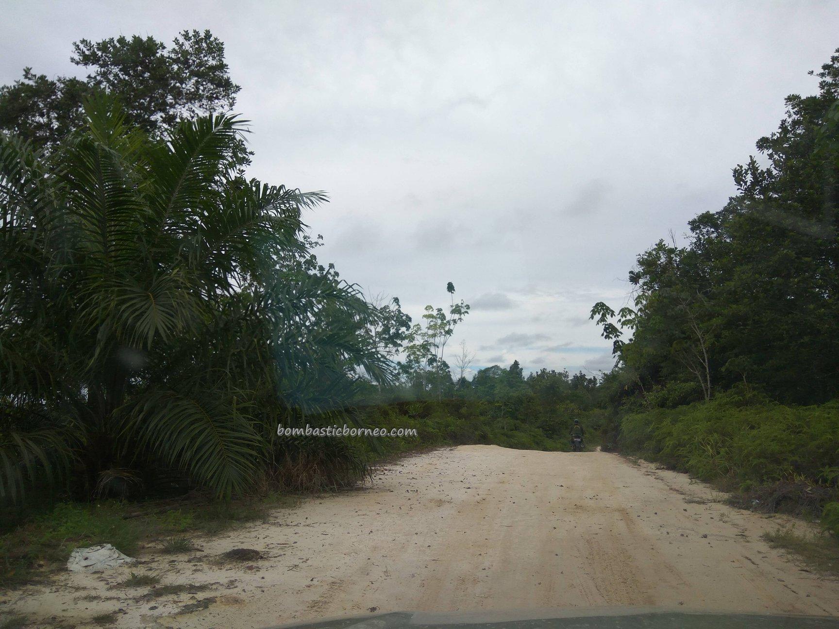 adventure, backpackers, destination, Bengkayang, Indonesia, Desa Bengkilu, Sanggau Ledo, native, village, Tourism, travel guide, 婆罗洲孟加映, 印尼西加里曼丹, Jalan Dwikora, Takek