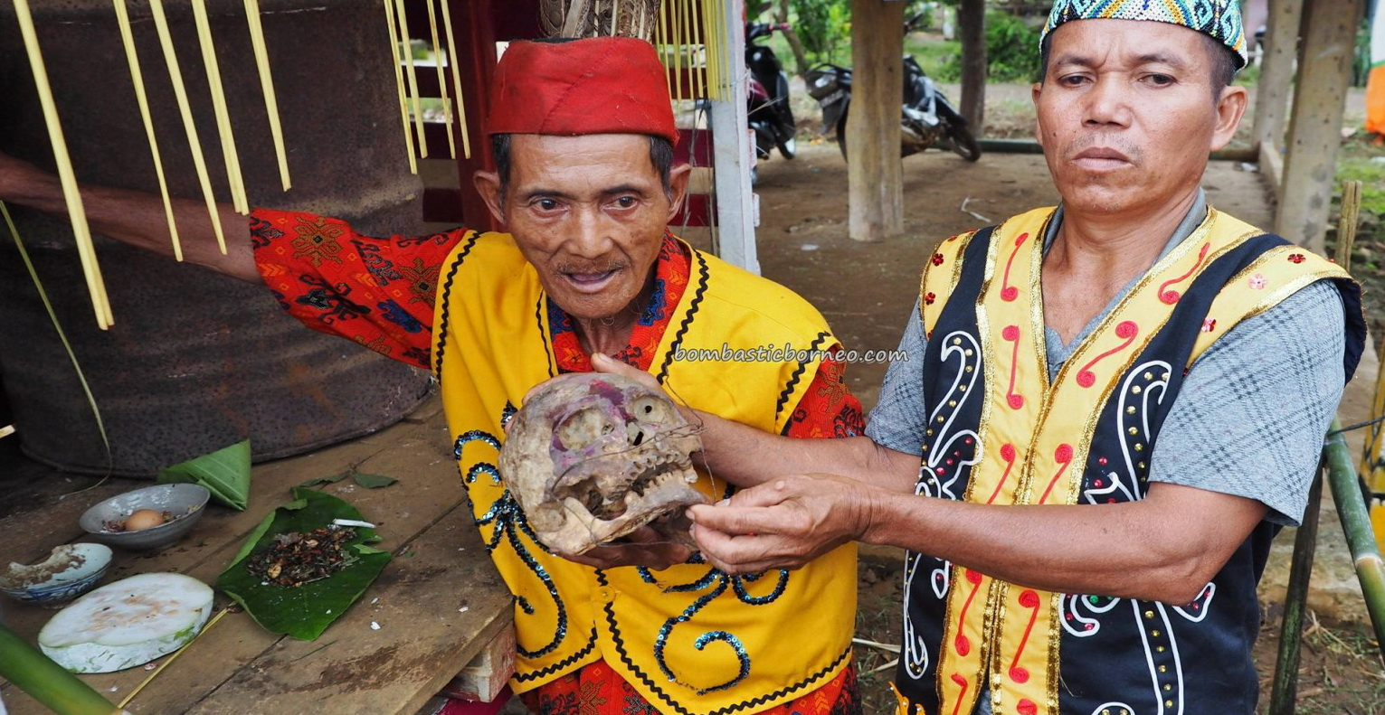 authentic village, traditional, culture, ritual, skull cleansing, feeding, Borneo, West Kalimantan, native, tribal, Tourism, tourist attraction, travel guide, transborder, 婆罗洲西加里曼丹, 原住民丰收节日