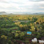 adventure, traditional, authentic, indigenous, destination, Borneo, Desa Bengkilu, Tujuh Belas, dayak, Tourism, tourist attraction, travel guide, crossborder, 印尼西加里曼丹, 婆羅洲原住民部落,