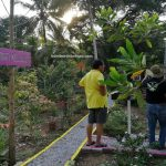 Camping Site, adventure, nature, outdoor, destination, family holiday, Kampung Pugu, Malaysia, stingless bee farm, Tourism, tourist attraction, travel guide, Transborneo, 婆罗洲旅游, 砂拉越无刺蜜蜂