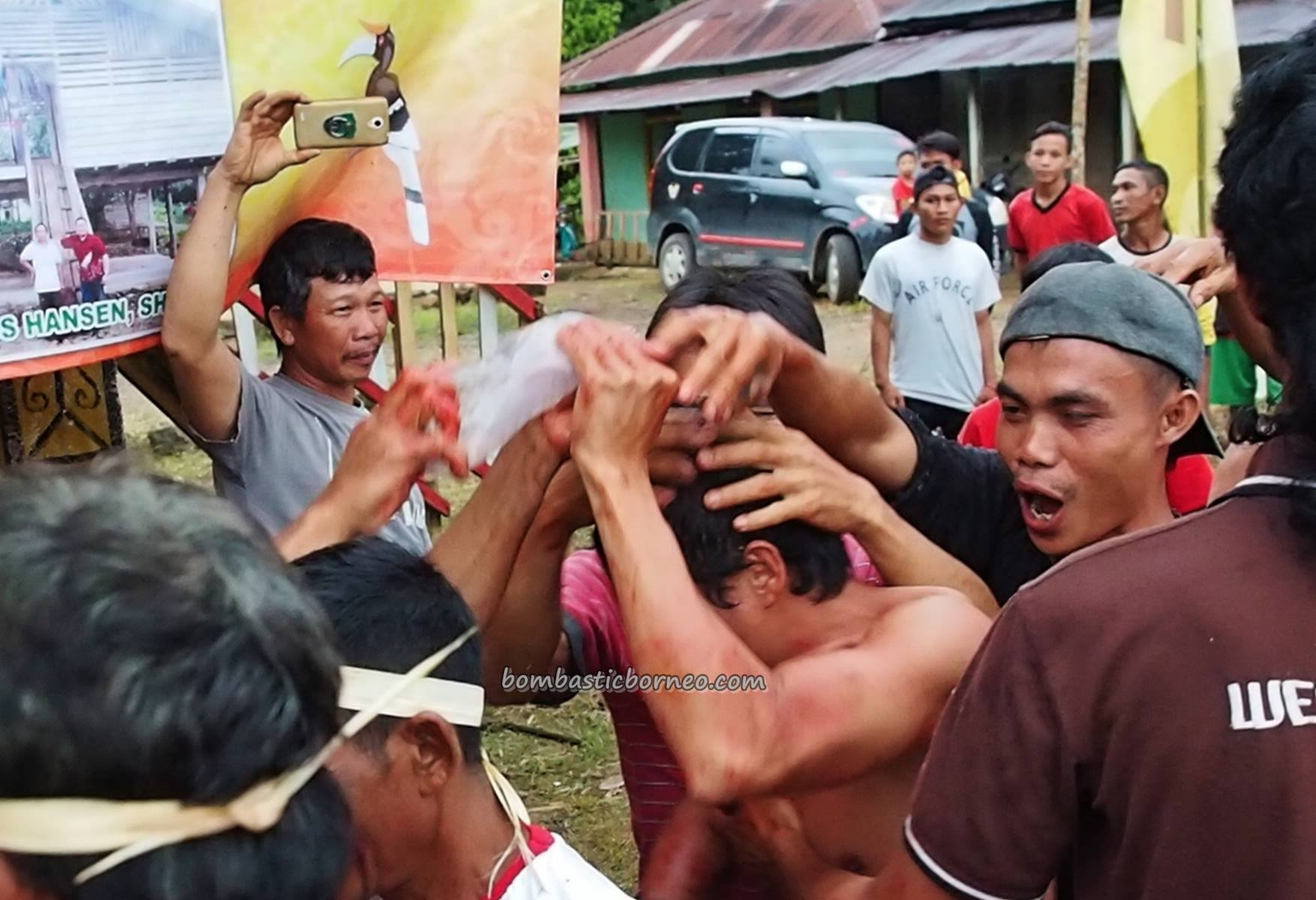Gawai Nyabakng, culture, event, skull feeding, backpackers, Bengkayang, Indonesia, Dusun Laek, Tujuh Belas, native, tribal, Tourism, tourist attraction, transborder, 印尼西加里曼丹, 土著丰收节日