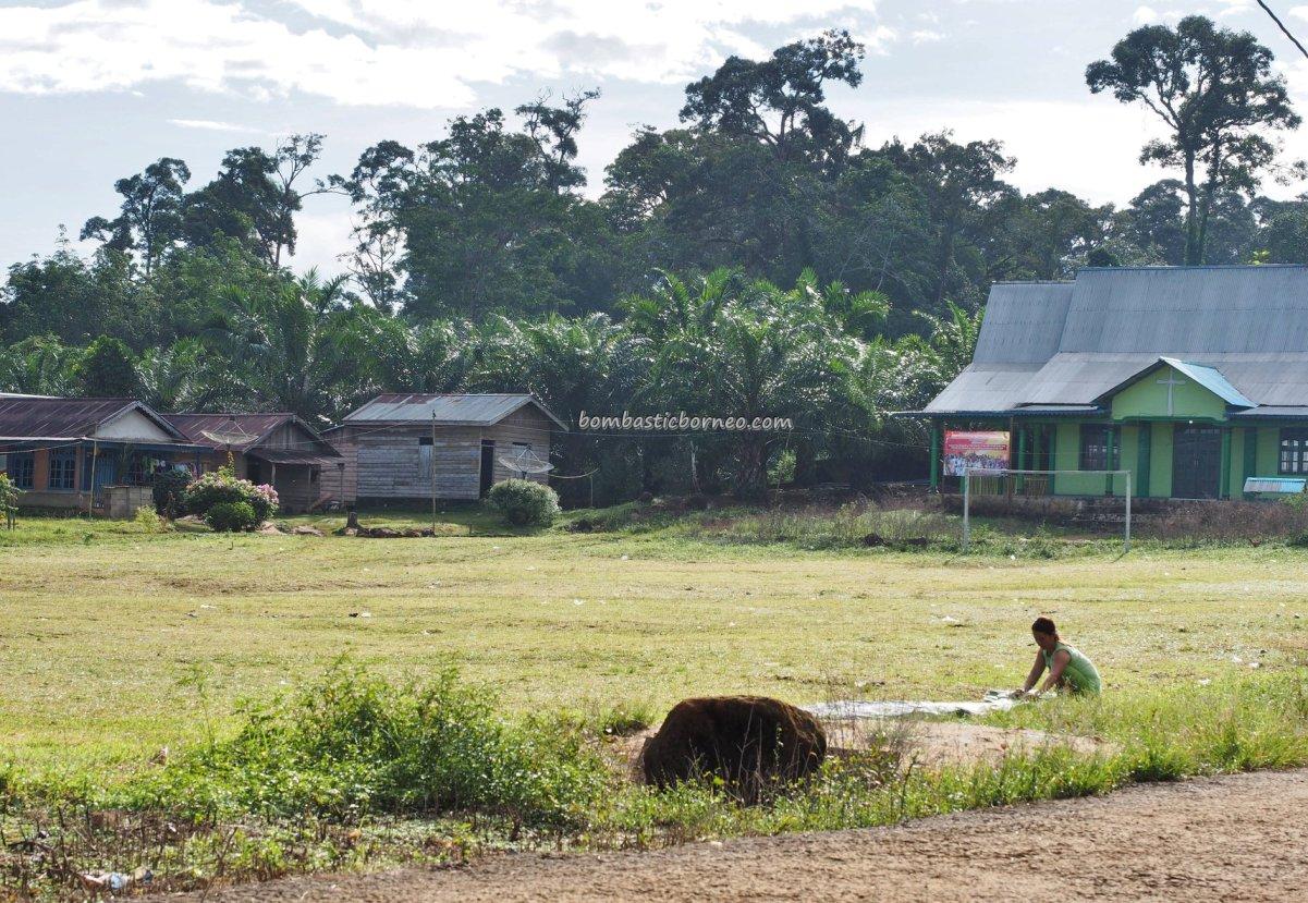 adventure, traditional, destination, backpackers, Kalimantan Barat, Indonesia, Desa Bengkilu, Tujuh Belas, native, tribe, Tourism, tourist attraction, crossborder, 孟加映西加里曼丹, 原住民部落,