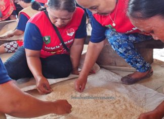Lomba menampik padi, Rumah Betang Raya Dori Mpulor, Gawai Dayak Sanggau, paddy harvest festival, indigenous, traditional, culture, Borneo, Indonesia, Kalimantan Barat, native, tribal, Tourism, travel guide, cross border,