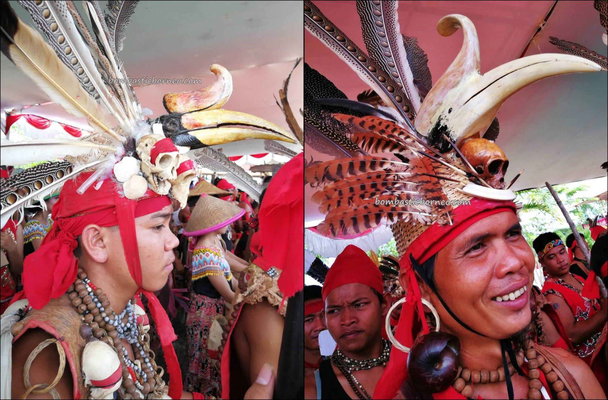 Gawai Dayak Sanggau, paddy harvest festival, thanksgiving, traditional, indigenous, event, culture, Borneo, Indonesia, Kalimantan Barat, native, tribe, wisata budaya, Tourism, travel guide, cross border