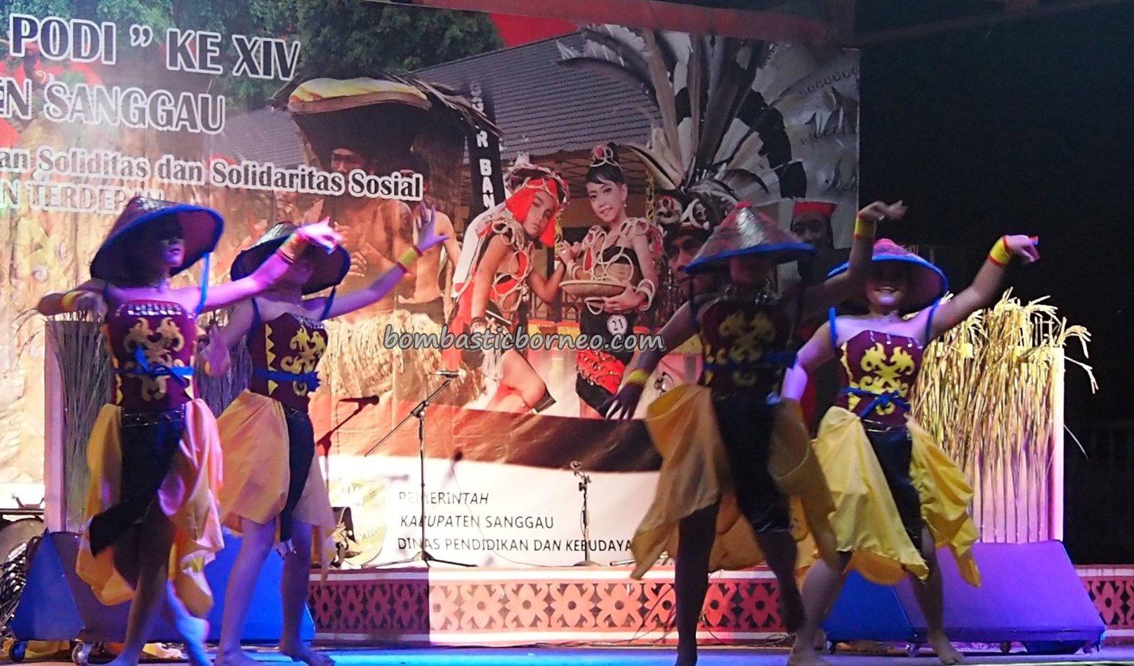 Gawai Dayak Sanggau, paddy harvest festival, indigenous, traditional, culture, event, Indonesia, West Kalimantan, etnis, native, tribal, wisata budaya, Tourism, travel guide, trans borneo,