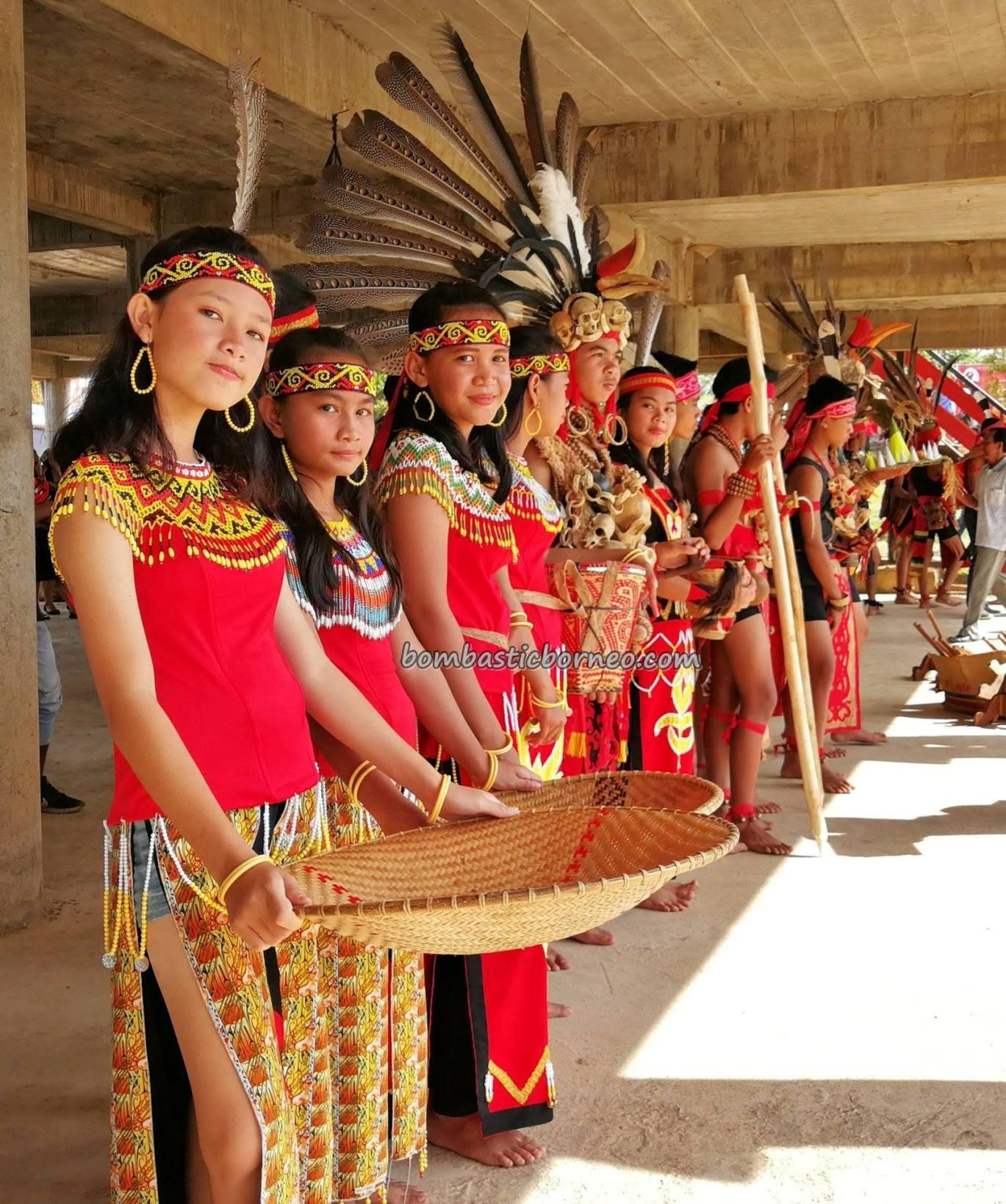 Rumah Betang Raya Dori Mpulor, Gawai Dayak Sanggau, paddy harvest festival, indigenous, authentic, backpackers, culture, Indonesia, Kalimantan Barat, native, tribe, tourist attraction, Tourism, travel guide, trans borneo,