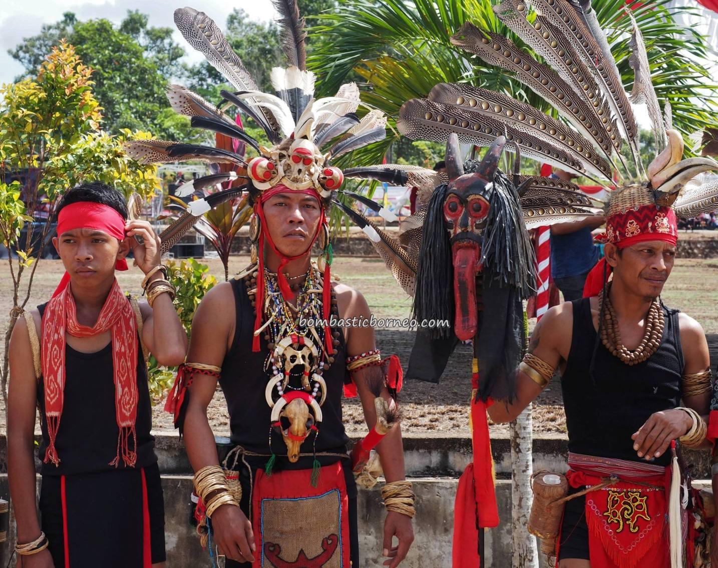 paddy harvest festival, indigenous, traditional, culture, event, Borneo, Kalimantan Barat, native, tribal, Obyek wisata, travel guide, cross border, 跨境婆罗洲游踪, 印尼西加里曼丹, 传统原住民部落文化