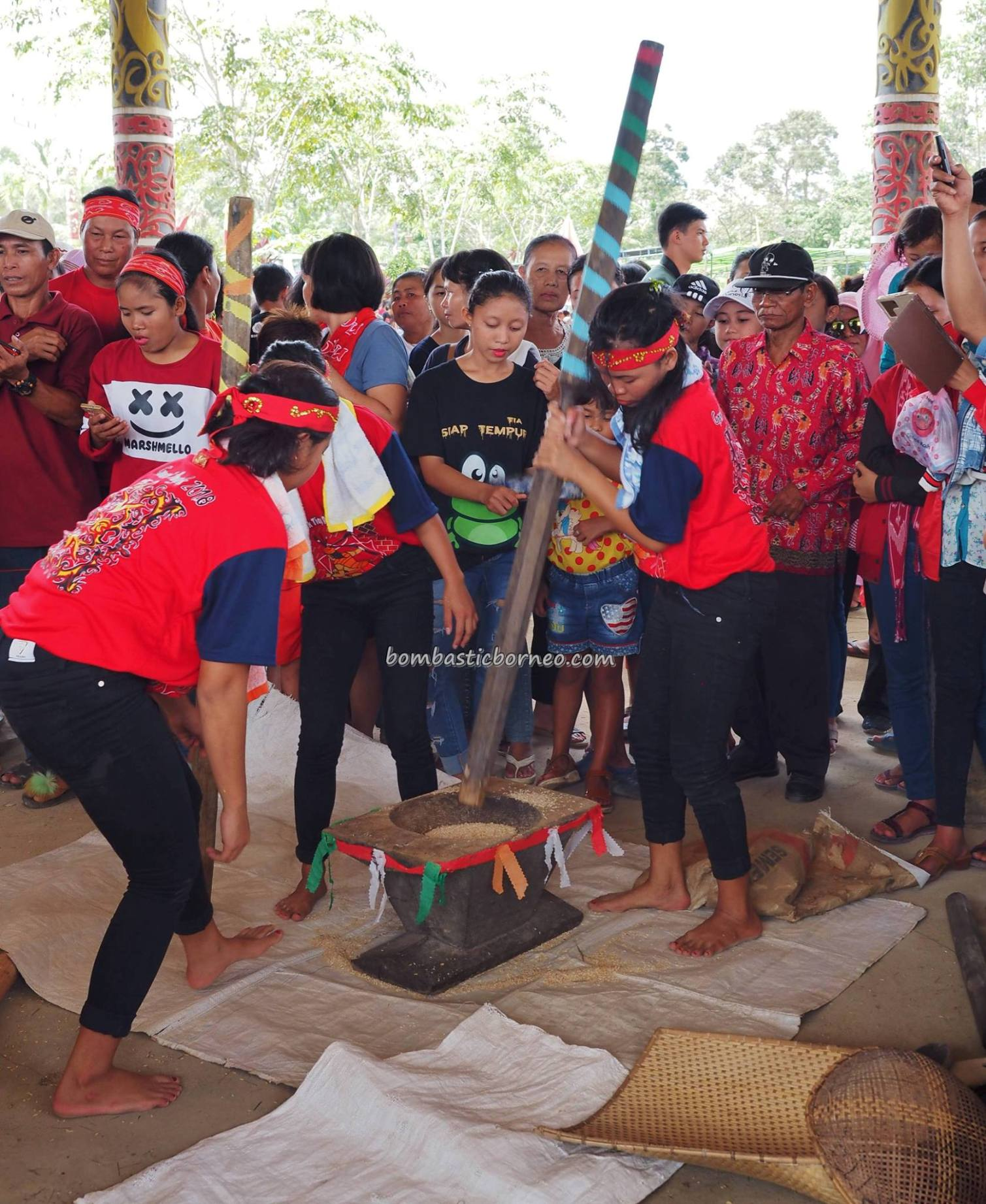 Lomba menumbuk padi, Rumah Betang Raya Dori Mpulor, authentic, traditional, culture, event, native, tribe, tourism, tourist attraction, travel guide, trans borneo, 跨境婆罗洲游踪, 印尼西加里曼丹, 传统原住民丰收节旅游