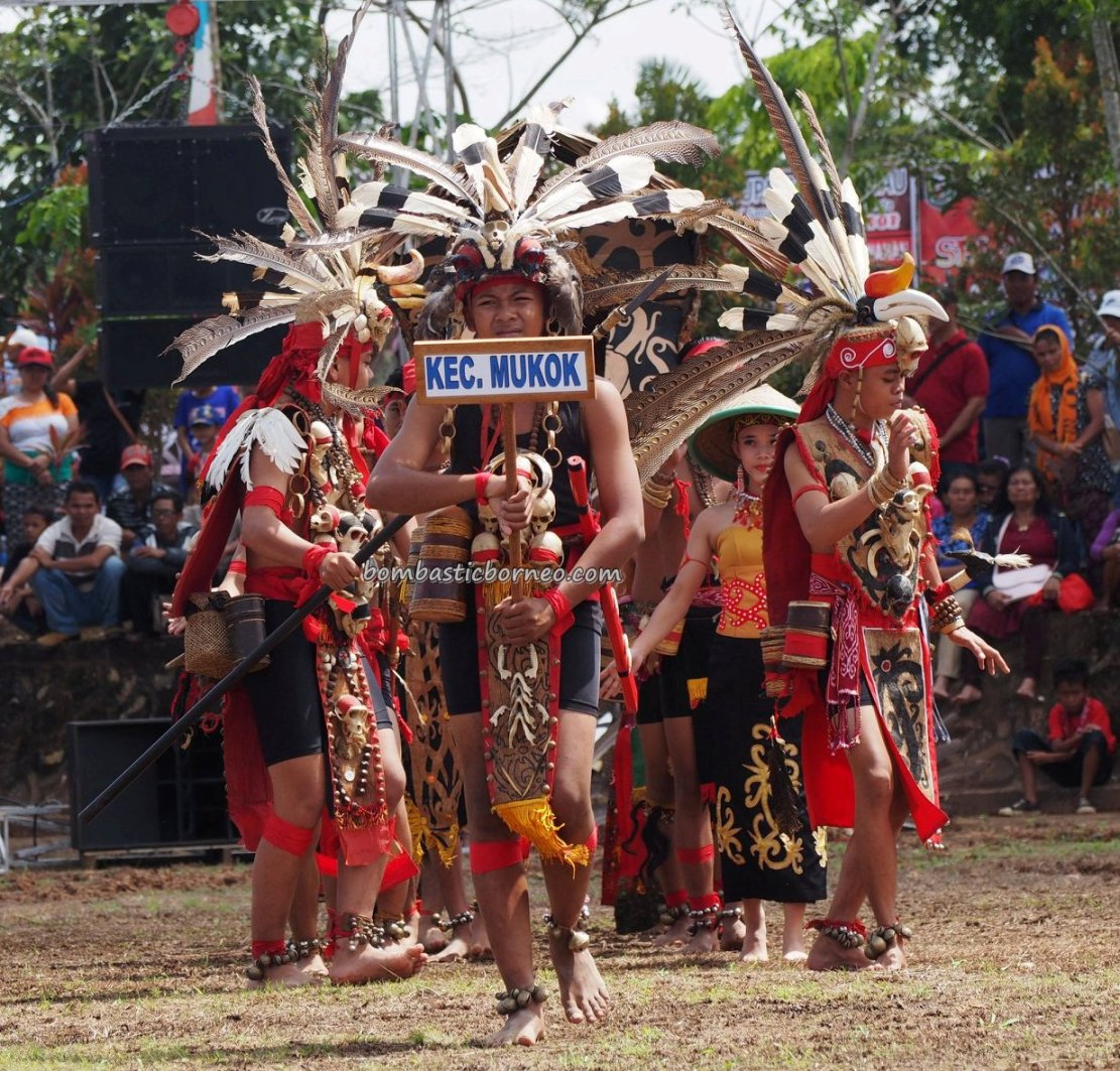 Dayak harvest festival, thanksgiving, authentic, traditional, backpackers, culture, ethnic, tribe, wisata budaya, Tourism, travel guide, trans borneo, 跨境婆罗洲游踪, 印尼西加里曼丹, 传统原住民文化