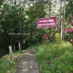 Mother Mary Grotto, nature, adventure, air terjun, Riam Macan, backpackers, destination, Indonesia, Tourism, tourist attraction, Trans border, obyek wisata, alam,