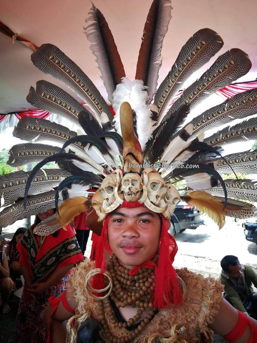 Gawai Sanggau, paddy harvest festival, thanksgiving, authentic, traditional, destination, event, Indonesia, ethnic, tribe, Tourism, tourist attraction, cross border, 印尼西加里曼丹, 婆罗洲达雅克丰收节旅游
