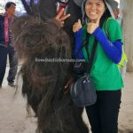 Gawai Dayak, thanksgiving, authentic, indigenous, traditional, destination, culture, Indonesia, West Kalimantan, native, wisata budaya, Tourism, travel guide, 印尼西加里曼丹, 传统原住民文化旅游