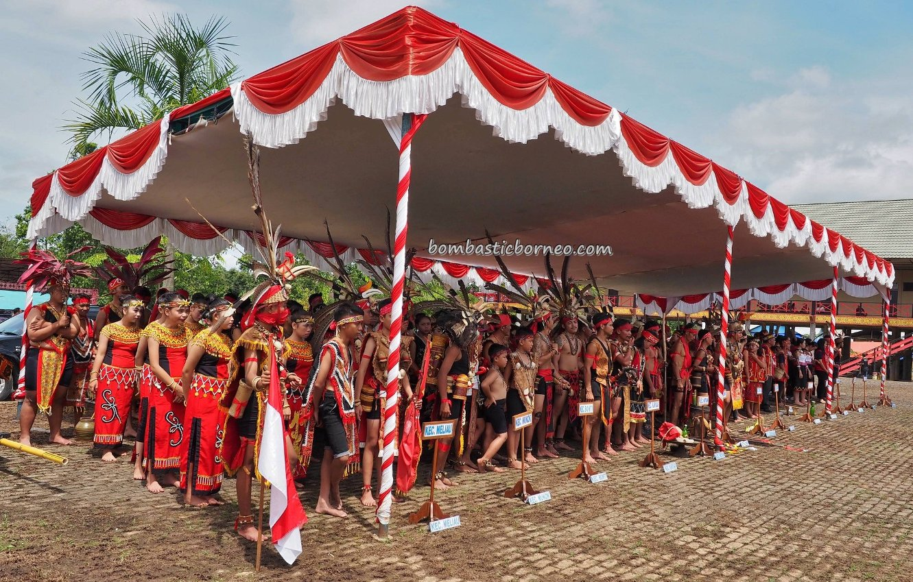 Gawai Dayak, paddy harvest festival, indigenous, authentic, backpackers, tribal, native, tribe, etnis, Tourism, tourist attraction, travel guide, trans borneo, 印尼西加里曼丹, 原住民丰收节旅游