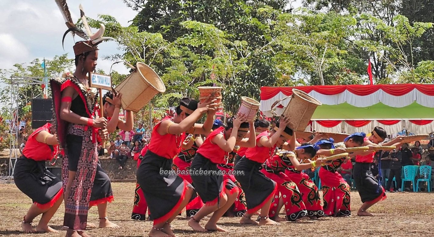 Tayan Hulu Sanggau, paddy harvest festival, indigenous, destination, culture, Indonesia, ethnic, native, tribe, Obyek wisata, Tourism, travel guide, trans borneo, 穿越婆罗洲游踪, 西加里曼丹原住民, 土著丰收节旅游
