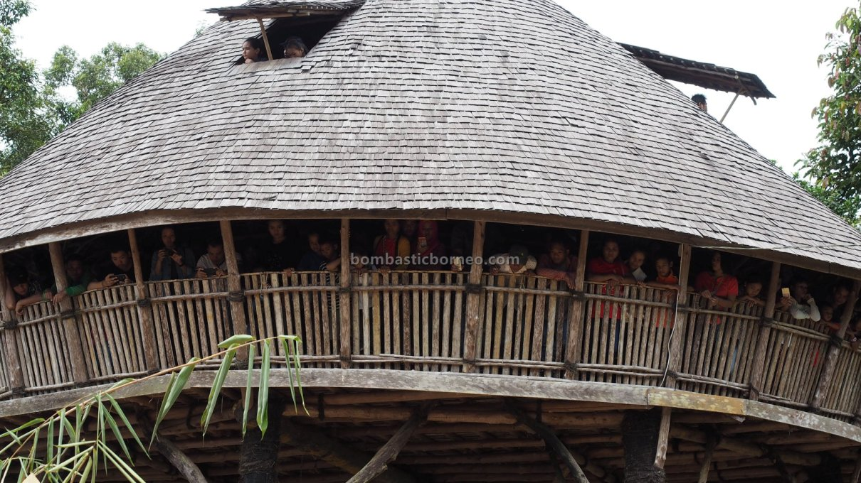 Gawai harvest festival, Rumah Adat Baluk, authentic, traditional, destination, culture, dayak bidayuh, native, Indonesia, Tourism, tourist attraction, travel guide, Trans Border, 婆罗洲游踪西加里曼丹, 土著比达友族传统文化