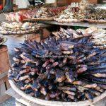 Pasar Flamboyan, Sungai Kapuas, traditional, seafood, destination, Borneo, Indonesia, Kalimantan Barat, Obyek wisata, Tourism, travel guide, Cross Border, 印尼西加里曼丹, 塞卡道早市